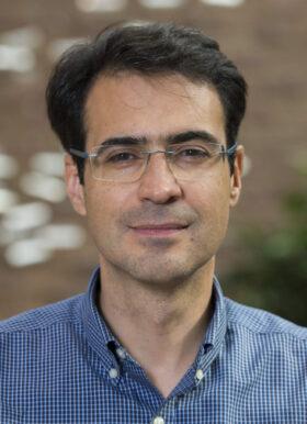 Guillermo Rosas