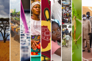 Africa Initiative awards pilot grants